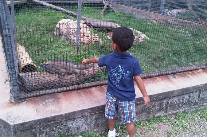 Tour Jamaica Zoo in Saint Elizabeth
