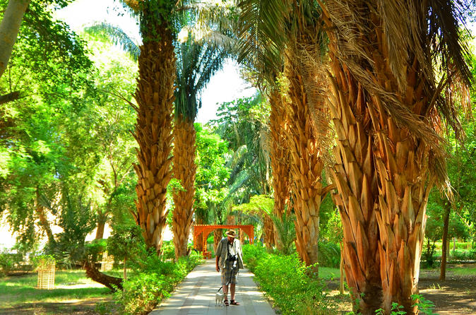 Private Felucca Tour: Aswan Botanic Gardens