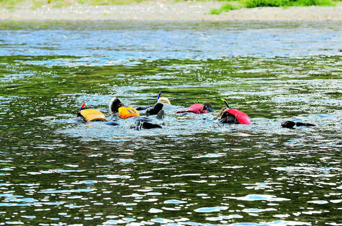 Snorkeling hiking and paddling combo package in matapedia river in gasp 325460