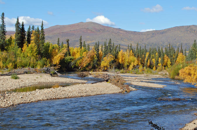 Chena river guided fishing tour in fairbanks 352704