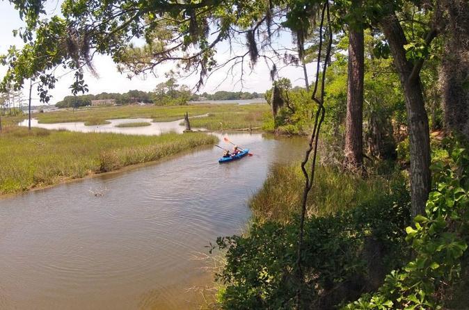 Kayaking And Wildlife Tour Of First Landing State Park Virginia Beach