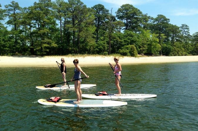 Stand Up Paddleboard Eco-Tour Of First Landing State Park