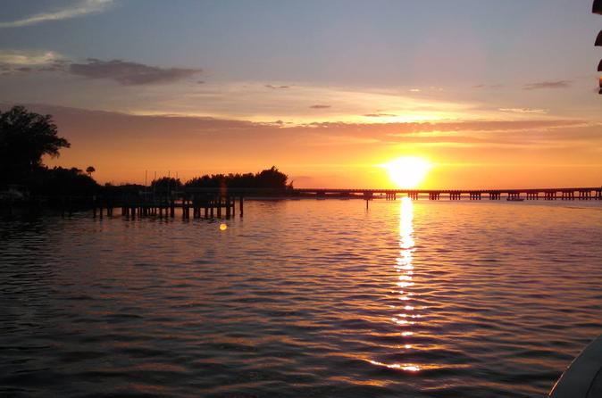 Palma sola bay sunset dolphin cruise in anna maria 304330