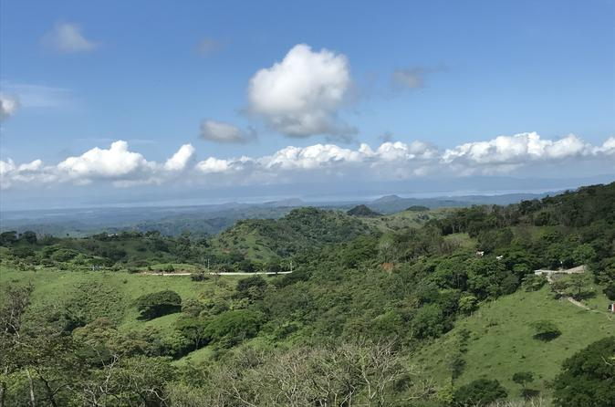 Full Day Monteverde Cloud Forest Tour from San Jose