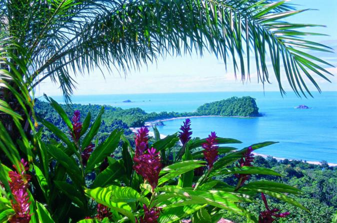 Manuel antonio national park in central pacific 136434