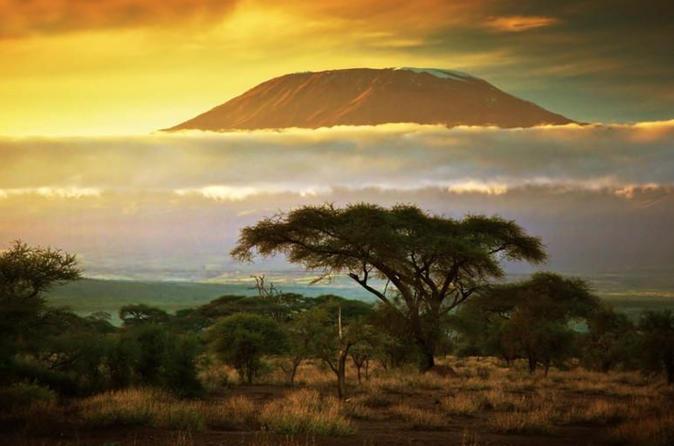 WILD PHOTO EXPEDITION  KENYA