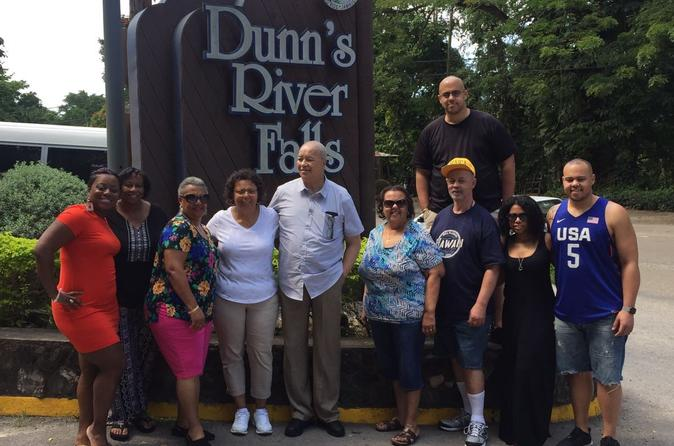 Private and Customized Tour to Dunn's River and or Secret Falls and Ocho Ros highlight from Montego Bay
