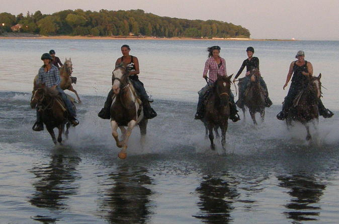 Niagara falls horseback riding in niagara falls 305958