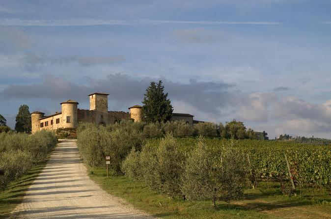 Winery tour in a castle in tuscany in san casciano in val di 305463