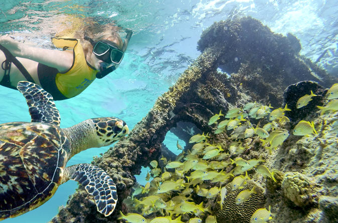 Reef and shipwreck snorkeling tour in cancun in cancun 304076