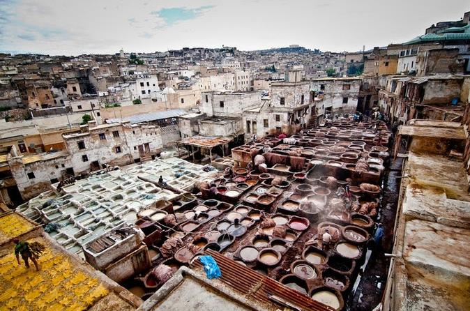 Fez medina 4 hour guided walking tour in fes 356705