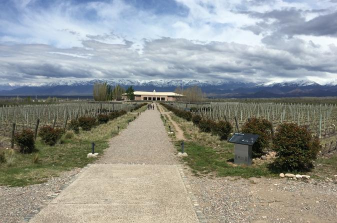 Excursão vinícola privada com almoço gourmet acompanhado de vinho saindo de Mendoza