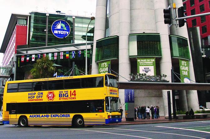 Excursão em ônibus panorâmico por Auckland