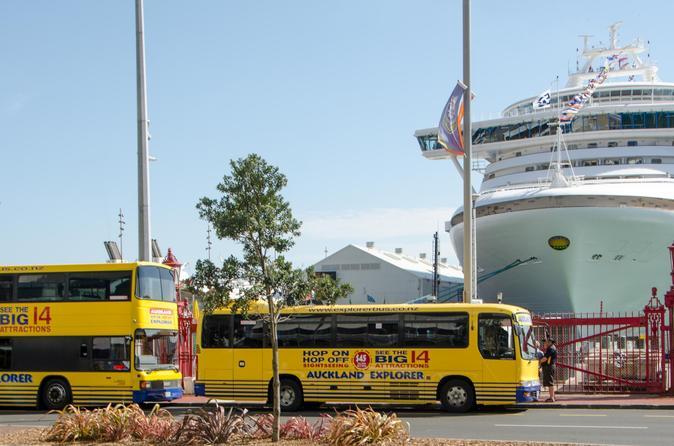 Excursão para a praia de Auckland: ônibus panorâmico
