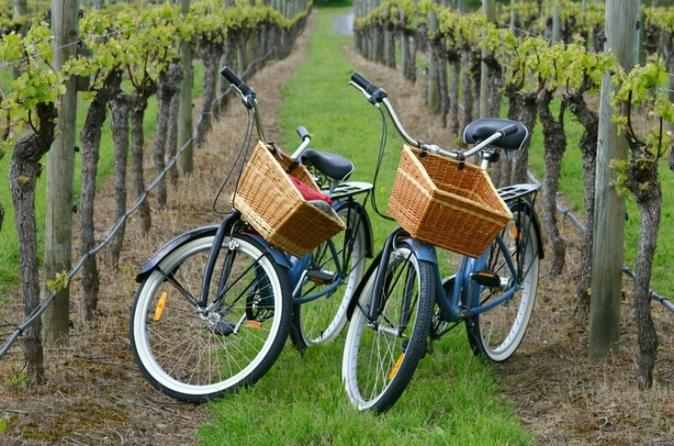 Mattituck new york guided farm and vineyard bike tour in mattituck 317075