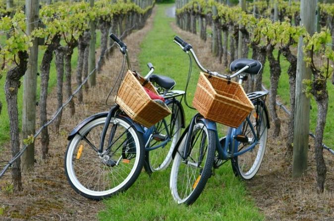 Long Island Vineyard Bike Tour