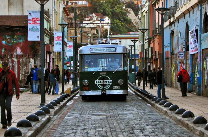 Excursão particular: excursão por Viña del Mar e Valparaíso com degustação de vinhos no Vale de Casablanca