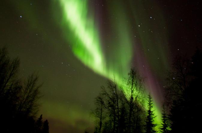 Lapland aurora borealis picnic from rovaniemi in rovaniemi 309072
