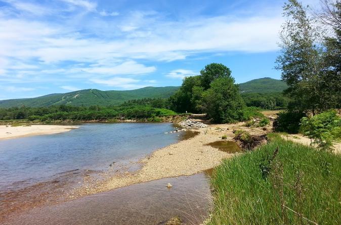Self guided saco river kayak trip in conway 326617