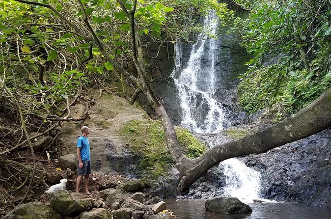 Waterfall Hike and East Oahu Explorer Combo