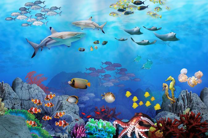 Ingresso normal para o SEA LIFE Sydney Aquarium