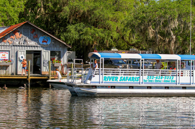 Scallop Hunt Expedition - Shared 10 Passenger Vessel With In-water Guide From Homosassa