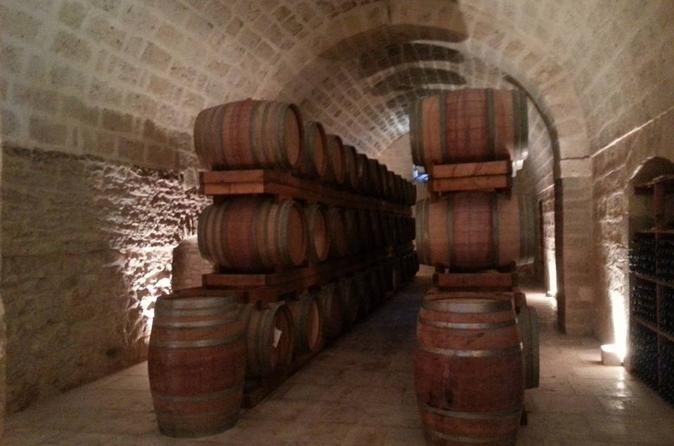 Full day salento wine and food tour in lecce 431631