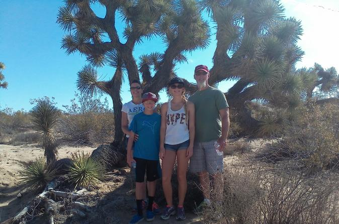 Joshua tree national park van tour in palm springs 215651