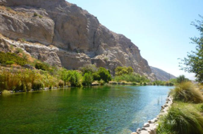 Palm springs wildlands preserve nature tour in palm springs 128714