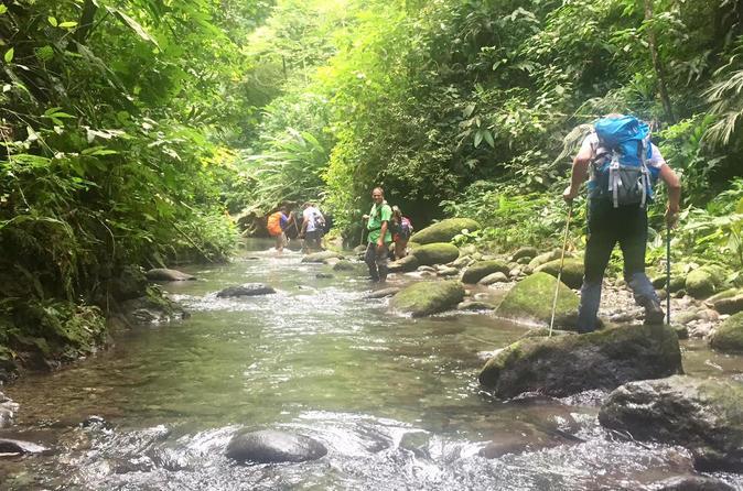 3-Day 2-Night Darien Jungle Exploration from Panama City, Panama