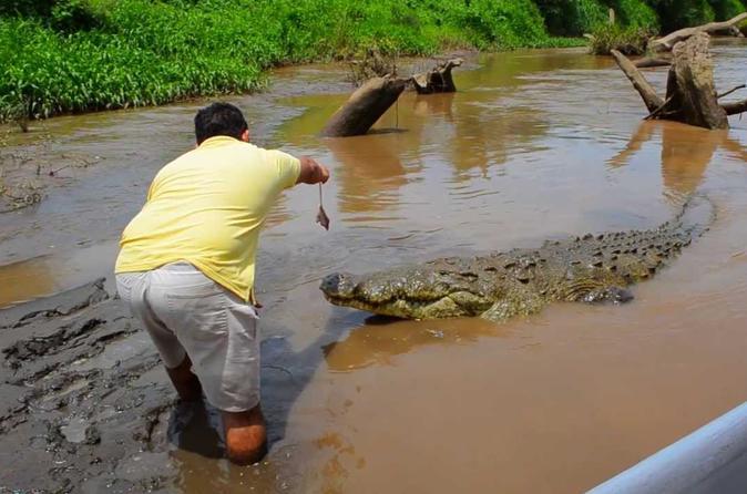 San Jose Crocodiles Safari and canopy private 7 in 1