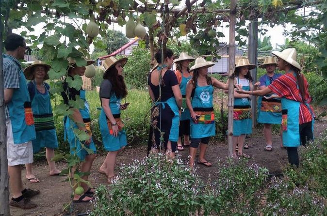 Aula de culinária de meio dia incluindo excursão pelo mercado partindo de Chiang Mai