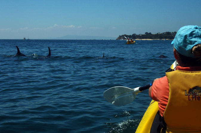 Mornington peninsula self guided kayak adventure for two in melbourne 318921