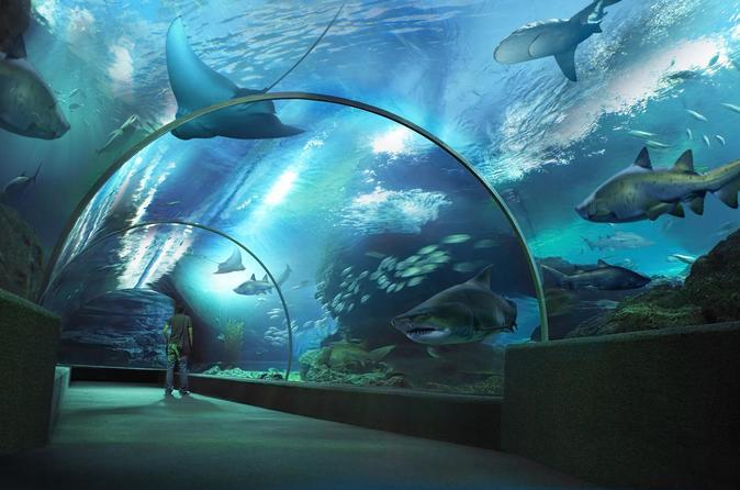 SEA LIFE Bangkok Ocean World Eintritt mit privatem Transfer