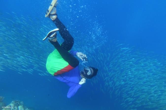 Pescador Island Hopping with Sardine Run - Dolphins - Turtle Point