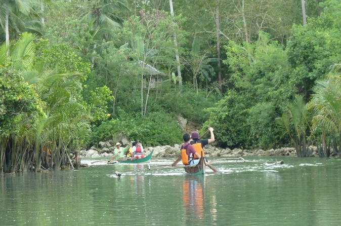 Private aloguinsan day tour with bojo river cruise from cebu in cebu city 403100