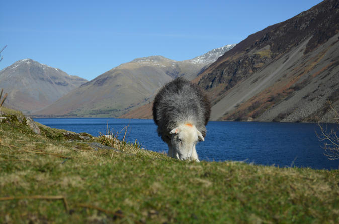 High adventure day tour from keswick in keswick 316329