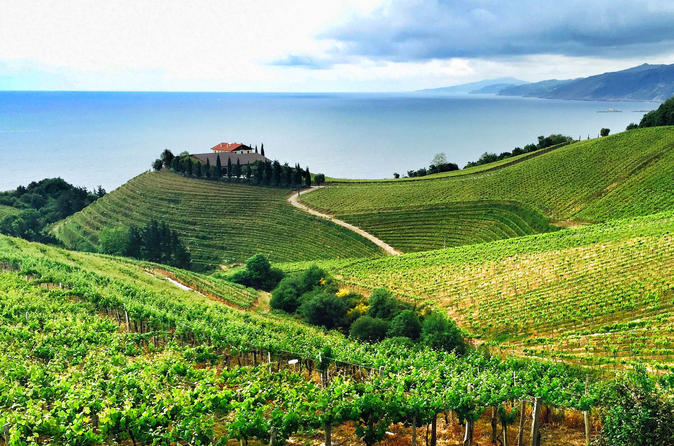 Cantabrian coast wine tour from san sebastian in san sebasti n 318554