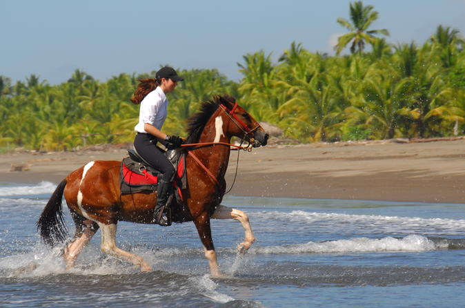Beach horseback riding adventure near jaco in jaco 317857