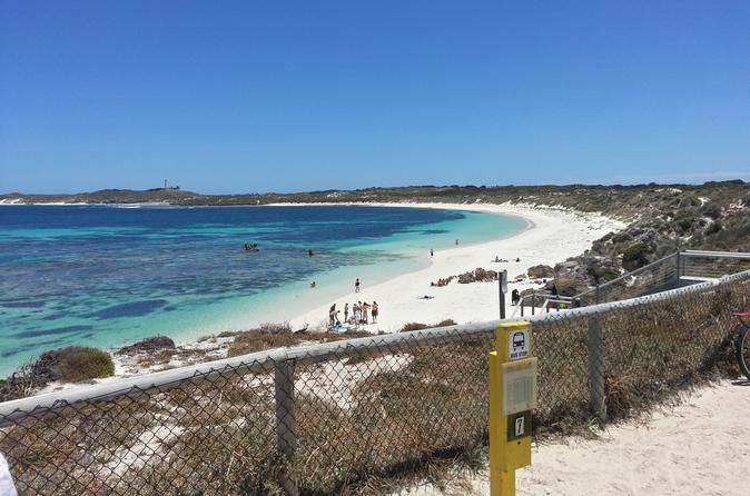Wave Rock Pinnacles and Rottnest Day Tour