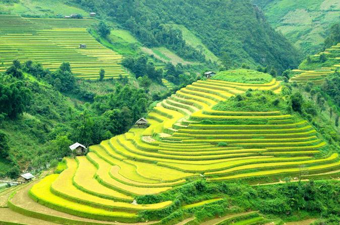 Small Group Trekking Tour To Sapa 2 Days - Homestay - Hanoi
