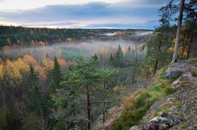 Finnish Lakes and Forests (from Helsinki)