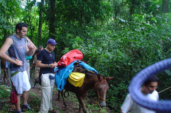 The Chagres Challenge - a full day jungle expedition from sunrise to sunset