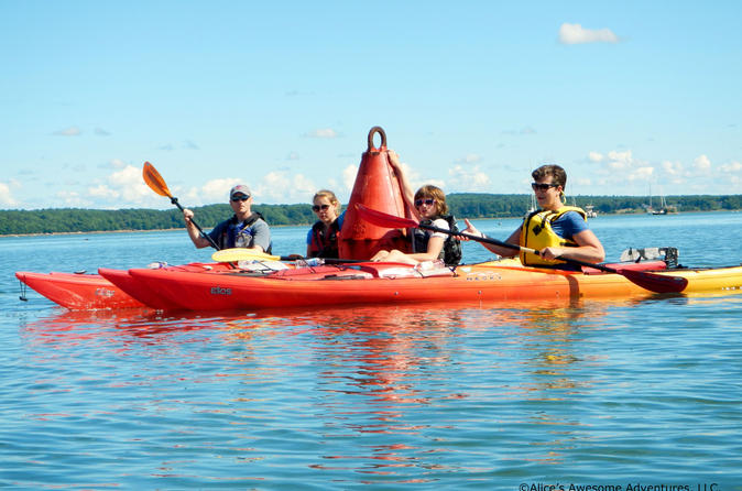 Sea kayak tour in casco bay in brunswick 335746