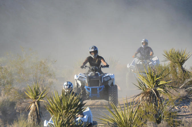 Excursão radical com ATV por Hidden Valley e Primm