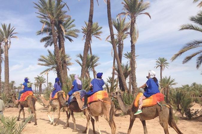 CAMEL RIDE NEAR TO MARRAKECH - Marrakesh