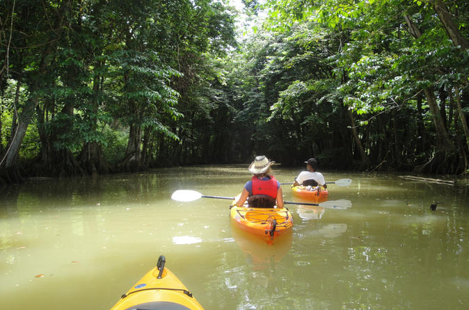 St. Lucia Marigot Bay to Roseau River Kayaking Tour, St. Lucia Tours, Travel & Activities