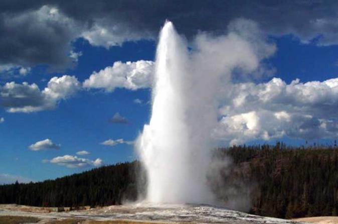 Yellowstone national park full day guided tour in jackson 326414