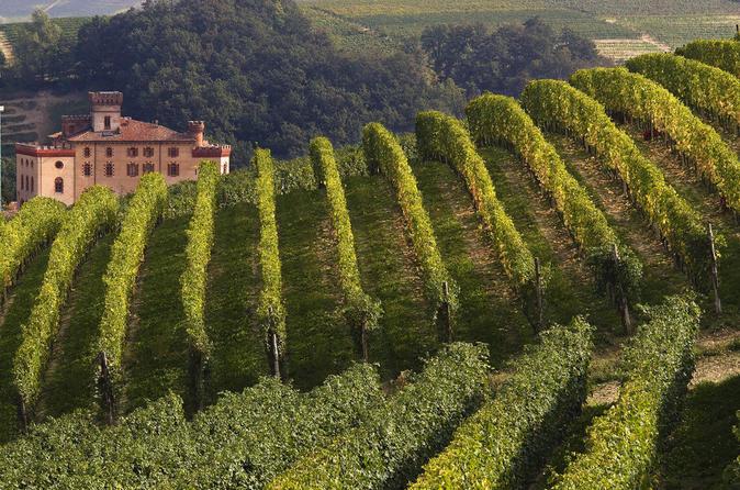 Excursão privada: Degustação de vinhos de Piemonte, da região Barolo