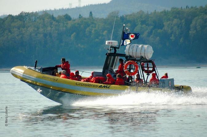 Cruzeiro de observação de baleias, durante todo o dia, partindo de Quebec